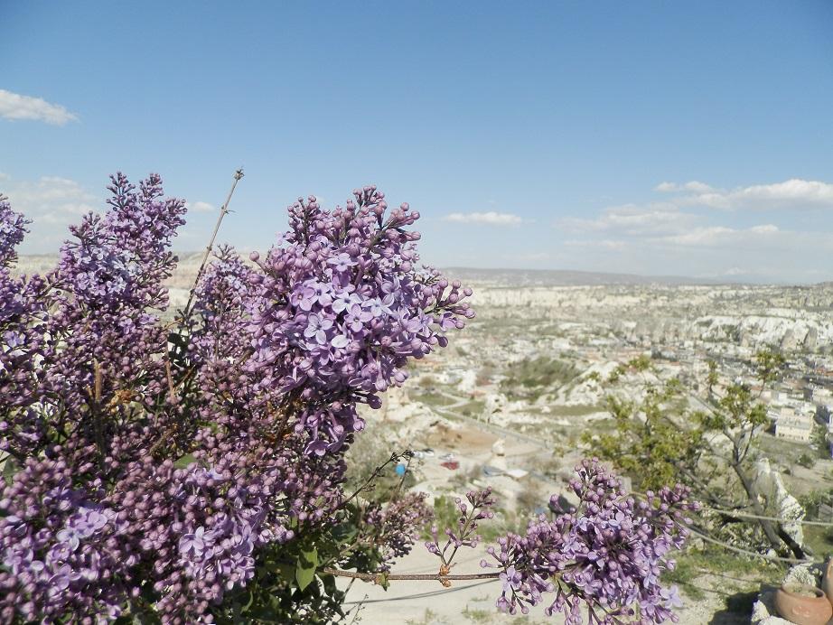 Каппадокия Панорама Гёреме